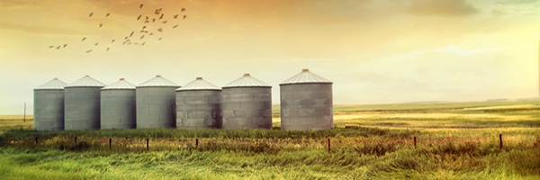Farming Businesses: Nine Tips from the IRS to Help with Taxes